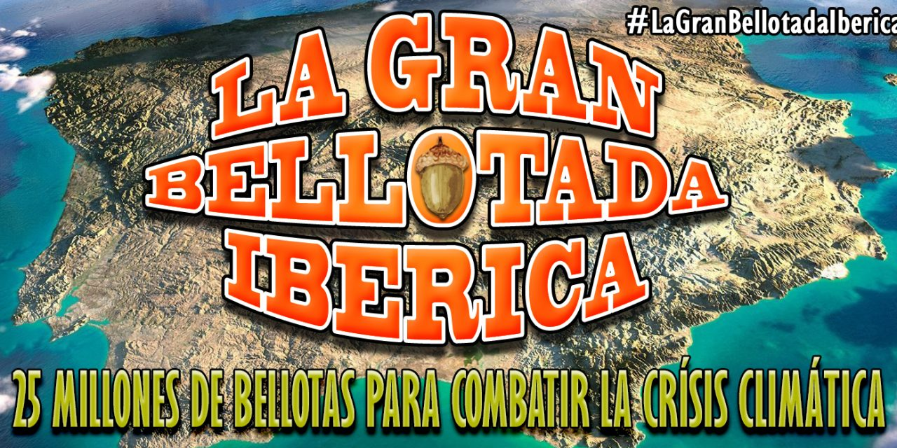 """<span class=""""entry-title-primary"""">En marcha una iniciativa masiva y popular de reforestación de la Península</span> <span class=""""entry-subtitle"""">""""La Gran Bellotada Ibérica""""</span>"""