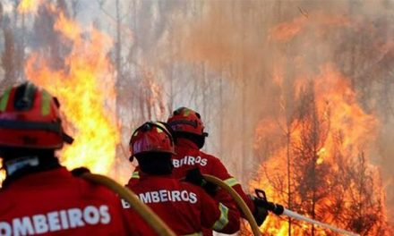 """<span class=""""entry-title-primary"""">Espanha e Portugal testam a sua coordenação contra incêndios</span> <span class=""""entry-subtitle"""">A simulação foi realizada na cidade raiana de Rosinos de la Requejada (Zamora)</span>"""