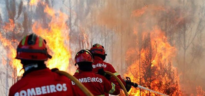 """<span class=""""entry-title-primary"""">España y Portugal ensayan su coordinación contra los incendios</span> <span class=""""entry-subtitle"""">El simulacro tuvo lugar en la localidad rayana de Rosinos de la Requejada (Zamora)</span>"""
