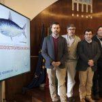 Más sardinas en las aguas de Iberia