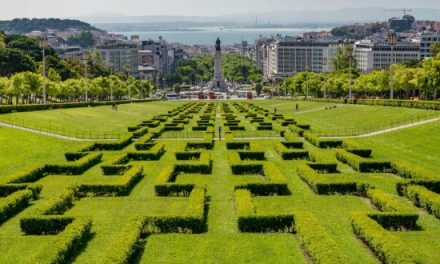 """<span class=""""entry-title-primary"""">Lisboa será até ao fim deste ano a capital verde da Europa</span> <span class=""""entry-subtitle"""">Terá inúmeras iniciativas, das quais se destaca a plantação de 20 mil árvores em quatro locais diferentes da cidade</span>"""