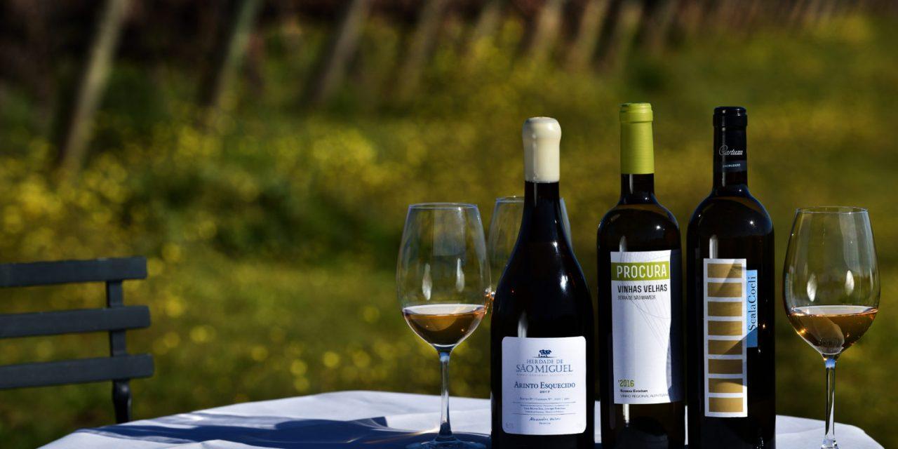 """<span class=""""entry-title-primary"""">Los vinos portugueses del Alentejo aumentan sus ventas</span> <span class=""""entry-subtitle"""">Portugal es el cuarto mayor exportador europeo de vinos, solo por detrás de España, Francia e Italia</span>"""