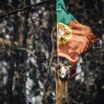 Pedrógão Grande: Tres años de un mega incendio que cubrió Portugal de cenizas