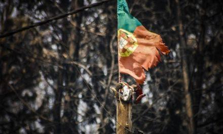 """<span class=""""entry-title-primary"""">Pedrógão Grande: Tres años de un mega incendio que cubrió Portugal de cenizas</span> <span class=""""entry-subtitle"""">Después de la tragedia de los incendios, el dolor y el miedo de caer en los mismos errores del pasado persisten</span>"""