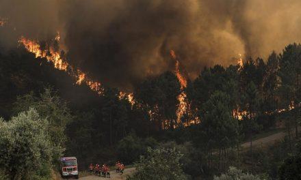 """<span class=""""entry-title-primary"""">El peligro de los incendios vuelve a poner en alerta a Portugal</span> <span class=""""entry-subtitle"""">Las 19 «freguesias» (parroquias) de la zona de Lisboa entrarán en estado de contingencia</span>"""