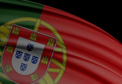 """<span class=""""entry-title-primary"""">Portugal recuerda a sus muertos en un día de luto nacional</span> <span class=""""entry-subtitle"""">El nuevo estado de emergencia es más limitado para salvaguardar la economía</span>"""